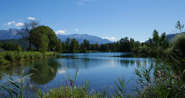 See in Bayern: Badesee Niederaudorfer See
